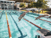 Maties swimming pool deck